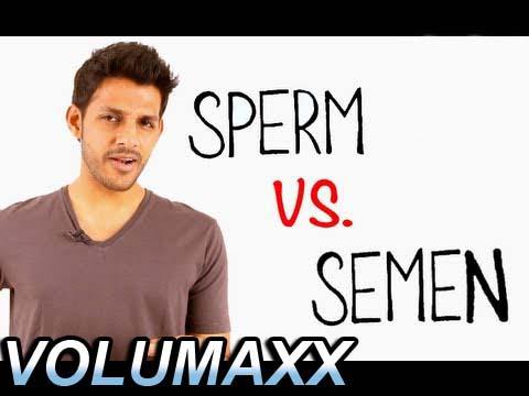 semen vs sperm